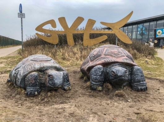 SY_X-406