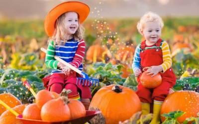 Discover the Fairies' Super Autumn DIY Guide