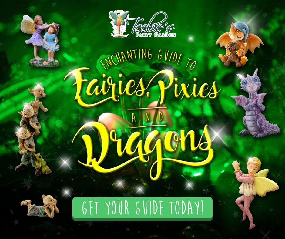 Fairy-dragon-guide