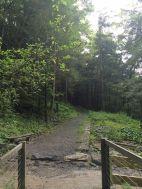 Part of Kent Falls Loop