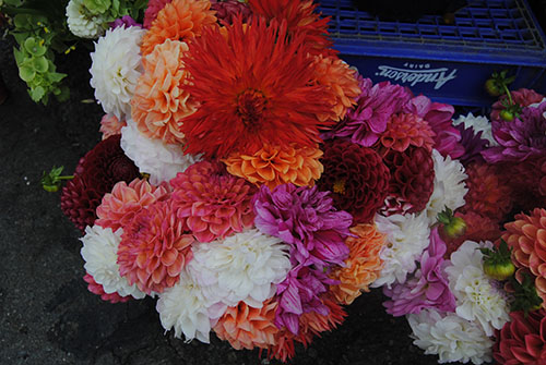 Flowers at the Farmer's Market. Photo by Lisa Wratten