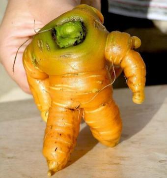 Морков, приличащ на робот от фантастика