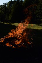 We had a campfire! Can you see any images in the flame?