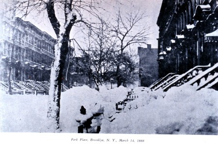 1888blizzBrklyn