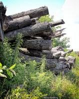Logs Piles UP
