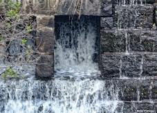 72-Closeup-Dam-Mumford-MA-082516_006