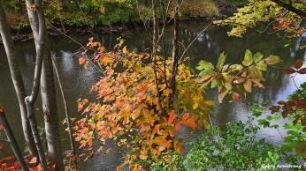 Blackstone River: Garry Armstrong