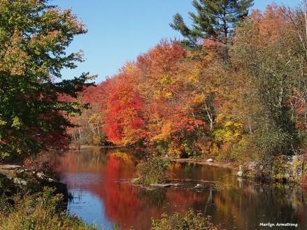 72-reflected-foliage-ri-omd-ma-10142016-2_003