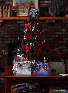 300-lr-tree-home-xmas-17122016_046
