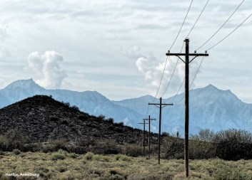 180-Phoenix-Wires-Sunday-011016_172