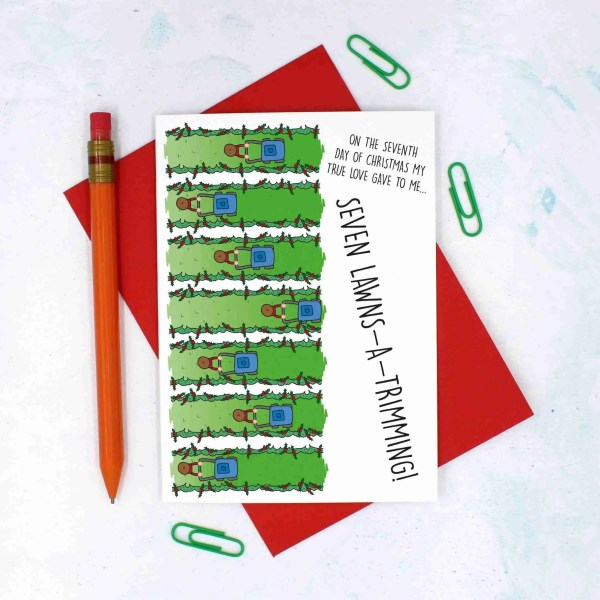 12 Days of Christmas, Lawn Mower Pun Card, Card for Gardener, Funny Christmas Card, TeePee Creations, Confetti Card, Nature Lover Card, Green Fingers Card, 7 Swans a Swimming, Christmas Card Set, Christmas Card Pack, 7th Day of Xmas, Funny Holidays Card