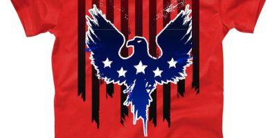 Grunge American Eagle USA Flag T-Shirt, USA, USA T-Shirt