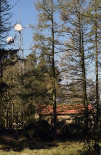Swarth Howe Mast