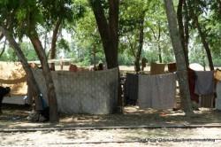 Roadside IDP along Swabi Road
