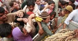 IDP's scrambling for food in SWAT