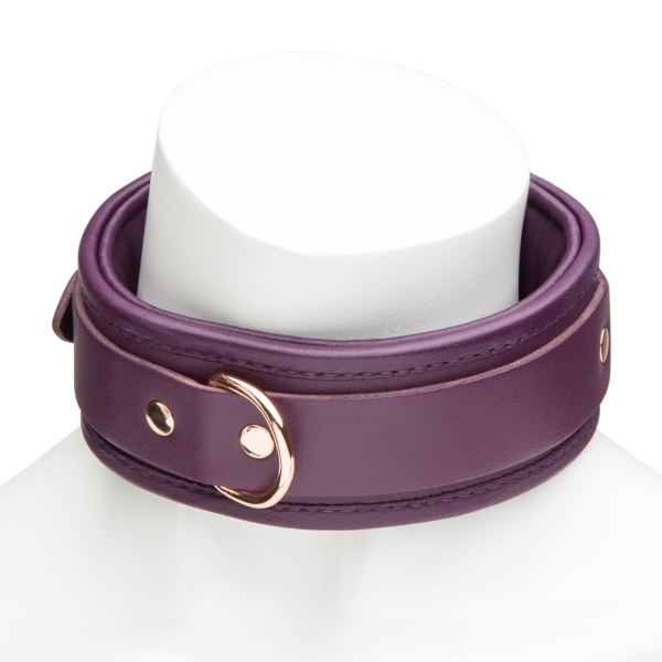 Fifty Shades Freed Cherished Collection Leather Collar & Lead