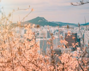 where to teach english in asia: south korea