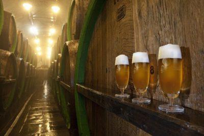 Row of beers in Plzen, Czech Republic