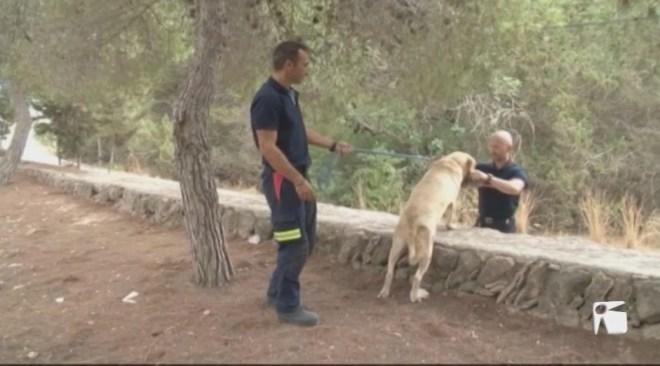 17/08 Els bombers d'Eivissa cerquen quissos per la futura Unitat de Rescat Caní