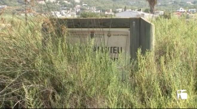 25/10 L'associació de veïns de Talamanca està estudiant denunciar al Consell d'Eivissa per l'estat en que es troben Ses Feixes