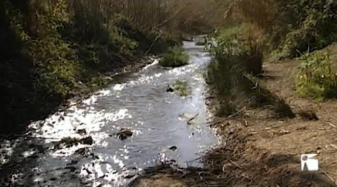10/04/2019 Cauen les reserves hídriques a les Pitiüses al mes de març