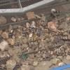 13/12/2019 Sant Josep prova noves maquinaries per fer més netes les platges
