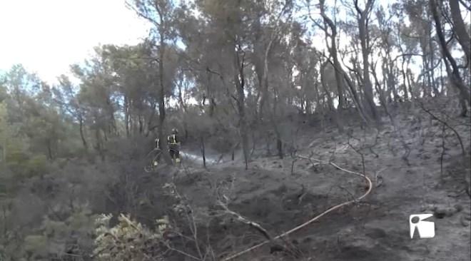 15/10/2020 Més de 5 hectàrees cremades per una imprudència