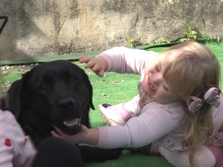 20/10/2020 Teràpia amb cans al Guillem de Montgrí