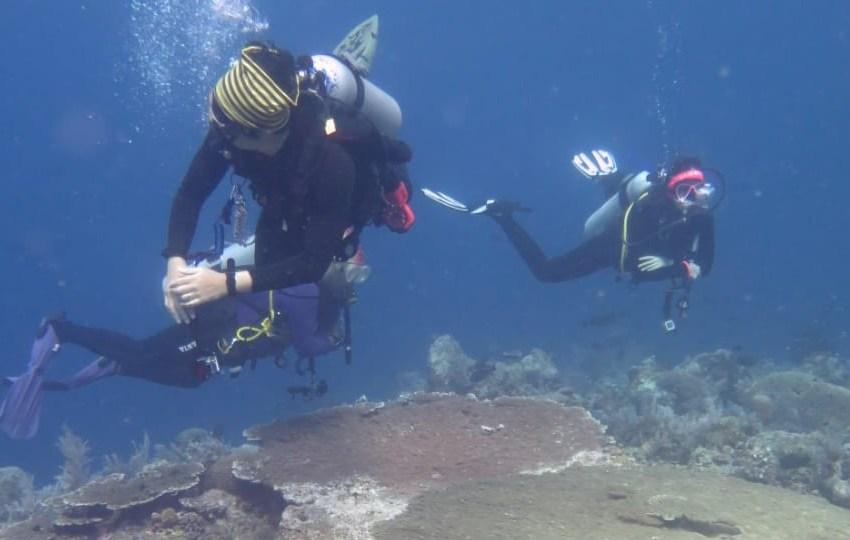 Proses pencarian korban dibawa permukaan air laut