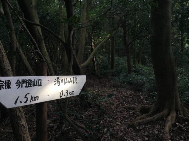 湯川山山頂まではかなり荒れています