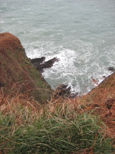 6. Bring your binoculars. We have seen baby seals on these rocks in the autumn.