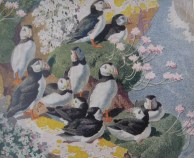 The Sociable Puffin by C F Tunnicliffe