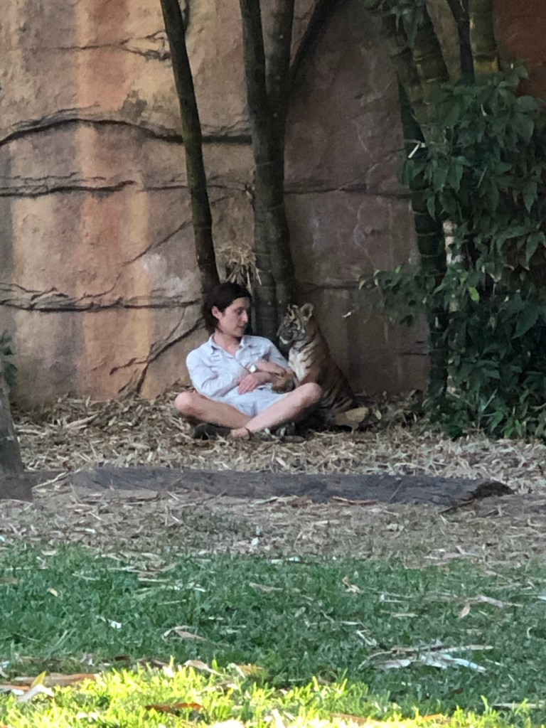 Baby tiger with zookeeper