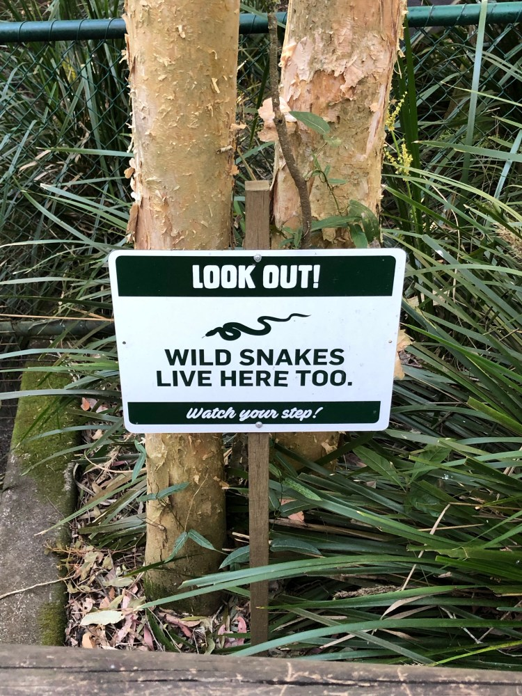 Sign about wild snakes