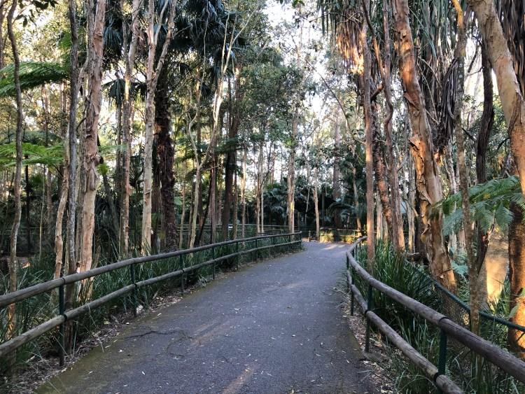 Pathway through Australia zoo