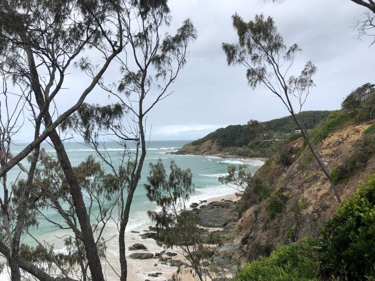 Ocean through trees