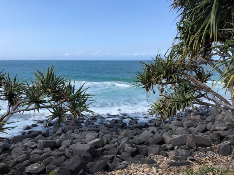 Trees , ocean, and rocks