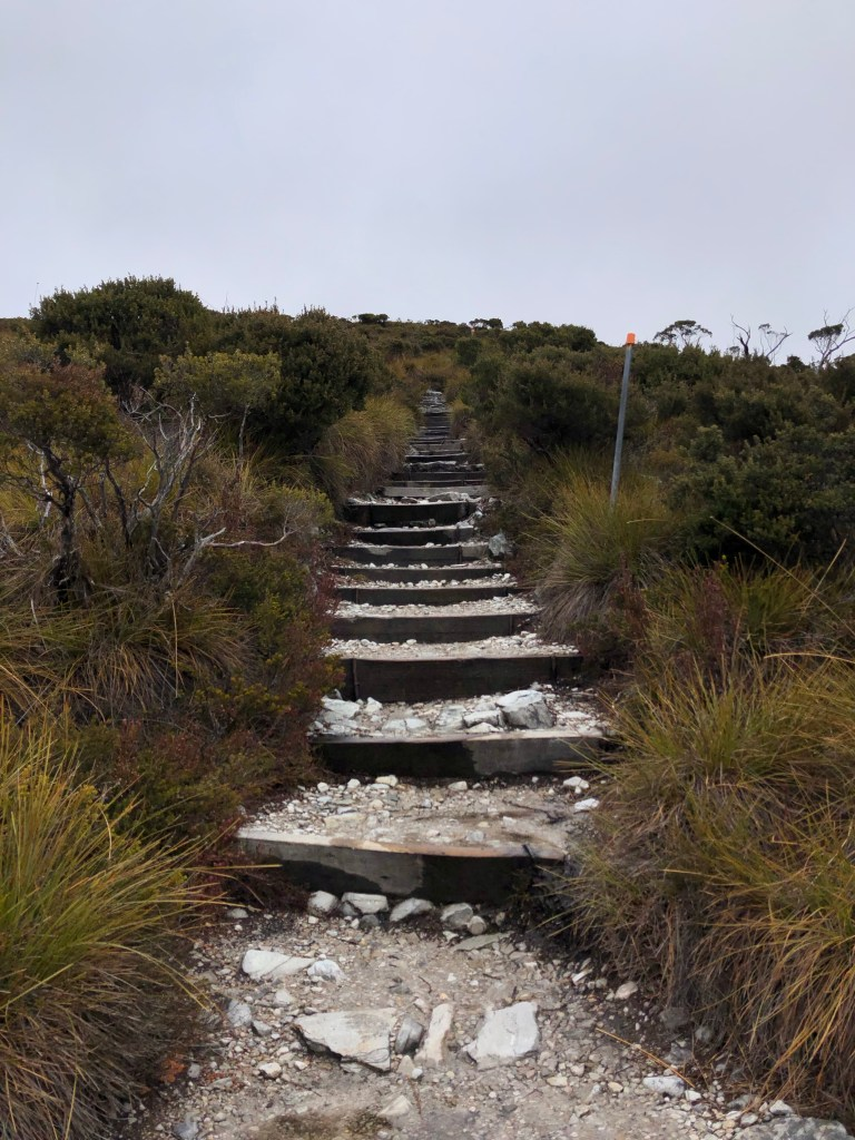trail of steps up a mountain