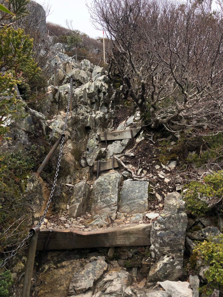 jagged rock steps