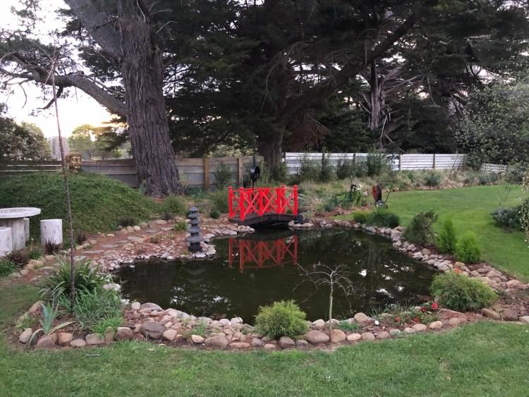 pond with little bridge