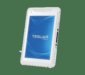 Teguar white medical tablet