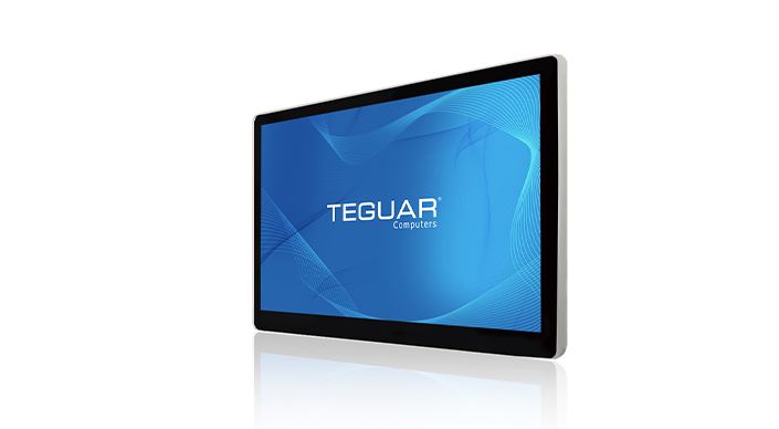 Teguar TMD-20-15 industrial display