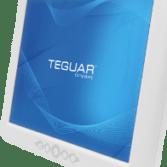 Teguar medical display