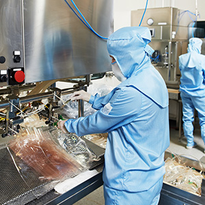 Factory worker in a food processing plant using industrial machinery