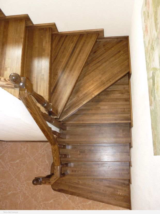 Лестница из бетона. Дерево