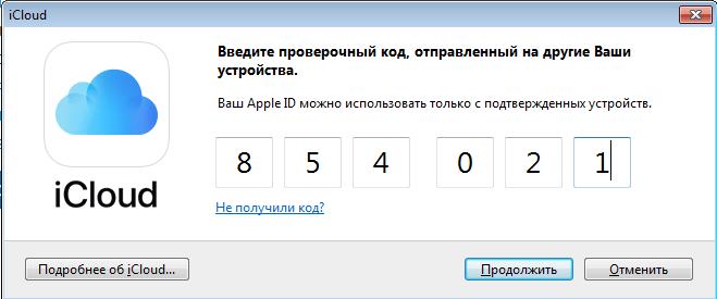 Pagsasaayos ng entry sa iCloud sa pamamagitan ng programa