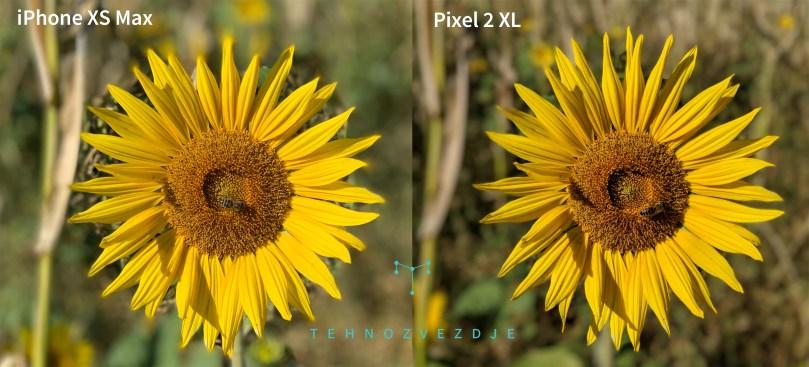 Zato pa je Pixel boljši pri posnetkih z zamegljevanjem ozadja.