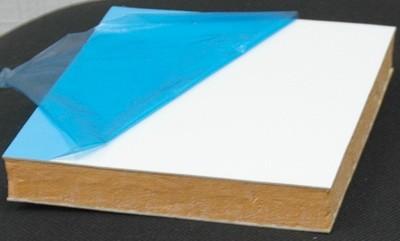 Sendvich panel s plastikovoi oblitsovkoi