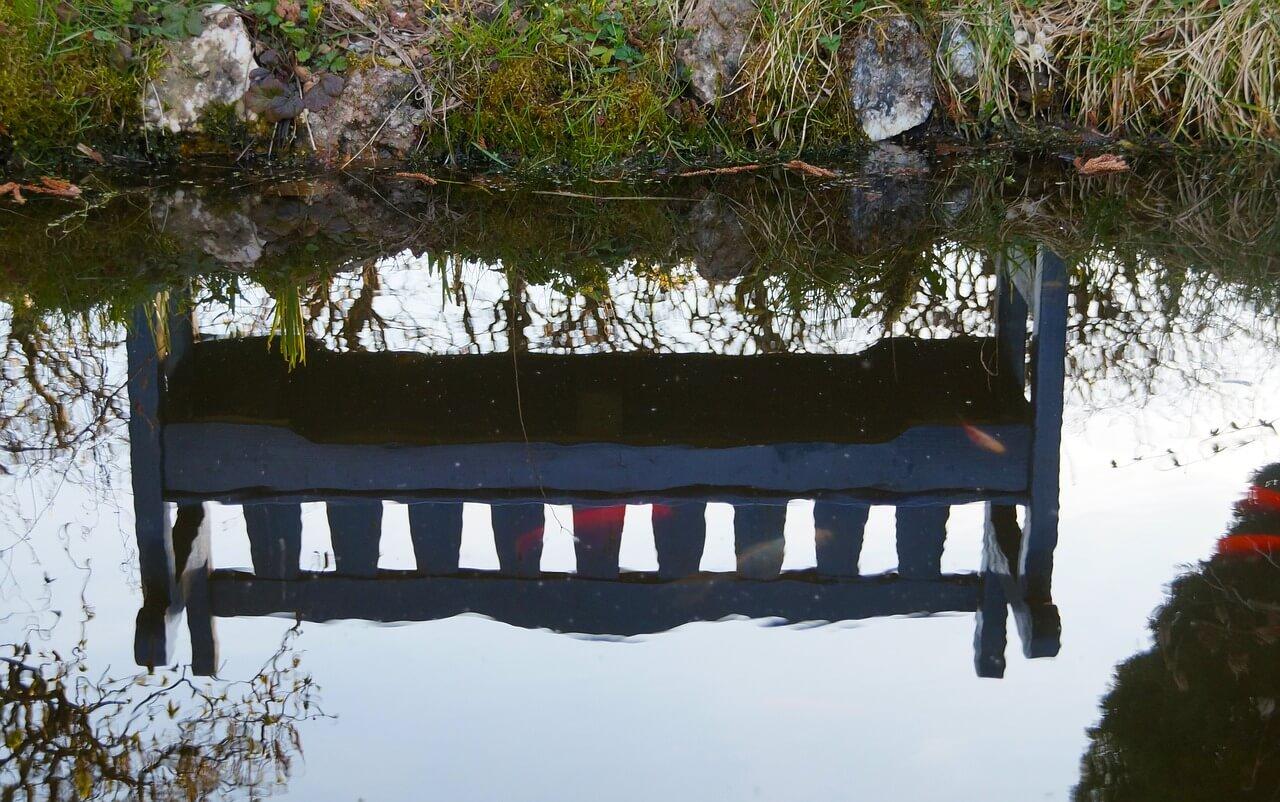 Schwimmteich Richtig Bepflanzen Teich Mit Bachlauf