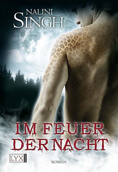"""Cover """"Gestaltwandler 4 - Im Feuer der Nacht"""""""